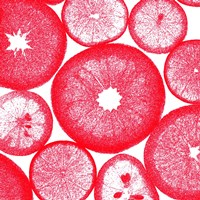 Red Lemon Slices Fine Art Print