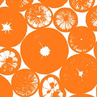 Orange Lemon Slices Fine Art Print