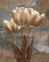 Tulip I Fine Art Print