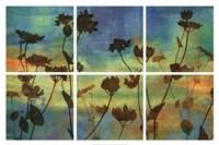 Wild Flowers I Fine Art Print