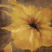 Colourful Flowers I Fine Art Print