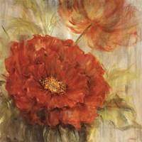 Calypso Reds I Fine Art Print