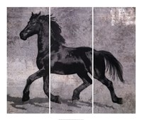 Caballus III Fine Art Print