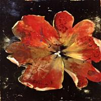 """Botany Fleur V by Georgie - 12"""" x 12"""""""