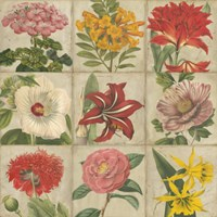 "Vintage Flower Grid by Vision Studio - 38"" x 38"", FulcrumGallery.com brand"
