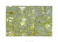 "String Theory IV by Jennifer Goldberger - 30"" x 22"""