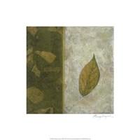 Earthen Textures XIII Fine Art Print