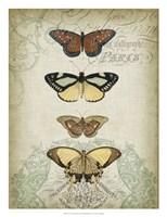 """Cartouche & Butterflies I by Jennifer Goldberger - 20"""" x 26"""""""