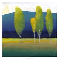"""Glowing Trees I by Timothy O'Toole - 26"""" x 26"""""""