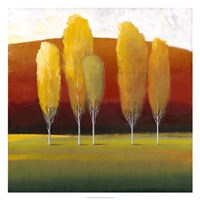 """Glowing Trees II by Timothy O'Toole - 26"""" x 26"""""""
