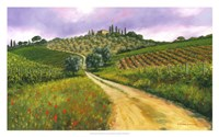 """Tuscan Road by Michael Swanson - 32"""" x 20"""""""