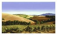 Tuscan Sky Fine Art Print