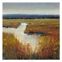 Marsh Land I Fine Art Print