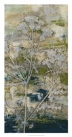 """Gossamer Blooms I by Megan Meagher - 17"""" x 32"""""""
