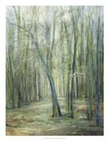 Crossroad II Fine Art Print
