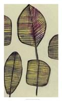"Leaflets II by Jennifer Goldberger - 16"" x 26"""