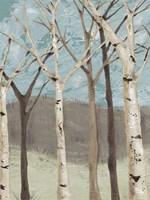 Blue Birches I Fine Art Print