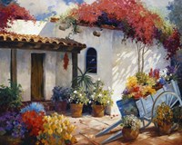 Casa Paloma Fine Art Print