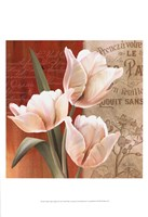 French Tulip Collage II Fine Art Print