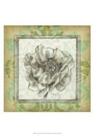 Victorian Poppy I Fine Art Print