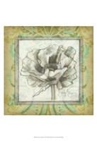 "Victorian Poppy II by Jennifer Goldberger - 13"" x 19"""