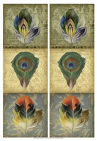 2-Up Feather Triptych II Framed Print