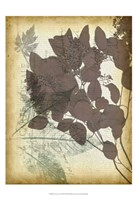 "Leaf Letters I by Jennifer Goldberger - 13"" x 19"", FulcrumGallery.com brand"