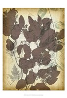 "Leaf Letters II by Jennifer Goldberger - 13"" x 19"", FulcrumGallery.com brand"