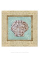 Shell & Damask I Fine Art Print