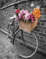Basket of Flowers II Fine Art Print