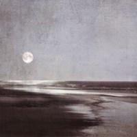 Moonlit Beach Fine Art Print
