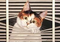 Sassy Lara Fine Art Print