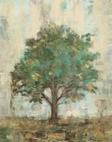 Verdi Trees I Framed Print
