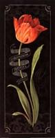 """Tulipa Botanica II by Lisa Audit - 8"""" x 20"""""""