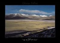 Lac BlancSal de Tso Kar Fine Art Print