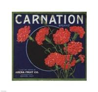 Carnation Brand Oranges, Anaheim - various sizes