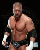 Triple H 2013 Fine Art Print