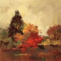 Fall Forest I Fine Art Print