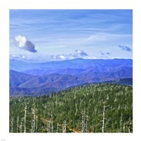 Great Smoky Mountains Fine Art Print