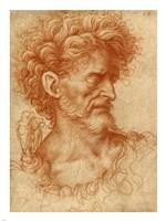 Saint John the Baptist Fine Art Print