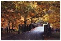 Autumn Overpass Fine Art Print