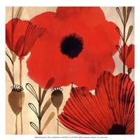 Wild Poppies I - Mini Fine Art Print