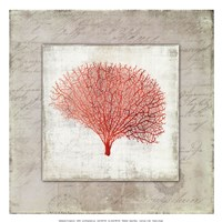 Coral Linen II - Mini Fine Art Print