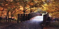 "Autumn Overpass-Special by Jessica Jenney - 36"" x 18"""