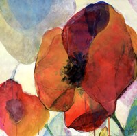 "Poppy II by Doug Kennedy - 18"" x 18"""