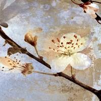 Fresh Blossoms 2 Fine Art Print
