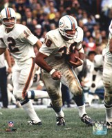 Larry Csonka Action Fine Art Print