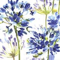 "Blue Medley III by Wild Apple Portfolio - 27"" x 27"""