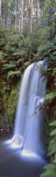Beauchamp Falls Vert II by Wayne Bradbury Photography - various sizes