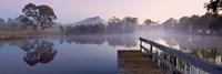 Dunkeld Arboretum by Wayne Bradbury Photography - various sizes